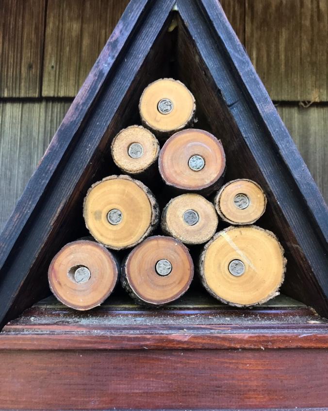 Mason bees use clay to fill the holes.